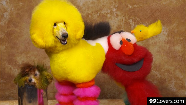 Big Bird and Elmo Grooming Design