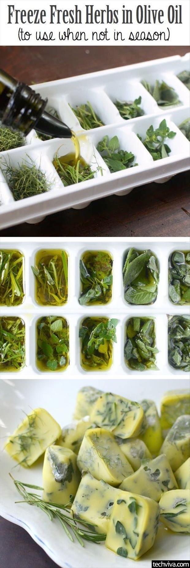 using-herbs-when-not-in-season