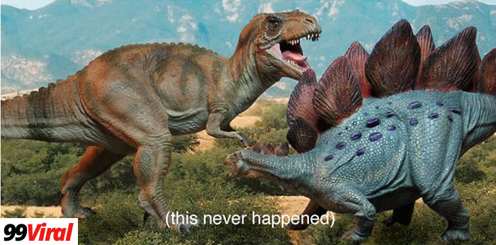 2. There was more time between the Stegosaurus and the Tyrannosaurus Rex than between Tyrannosaurus Rex and you.